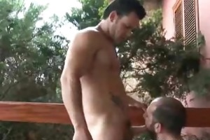 hairy dilfs teasing every others body